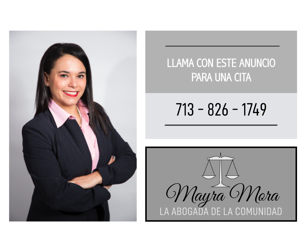family law, probate, guardianship, immigration